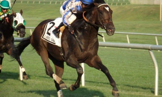 Mosler posts Laurel Dash win; Ben's Cat fifth