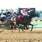 Challedon Stakes: Mylute, plus posts, odds, and analysis
