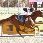 October 19 racing highlights: Dream Prospect wins 3rd straight