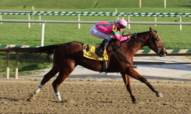 Which Maryland Million champs may defend their titles?