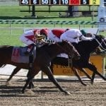 Star Super tabbed as chalk in Marshua Stakes