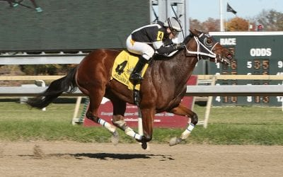 True Sweetheart gives Uptowncharlybrown first winner