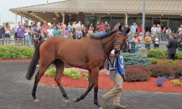 Malibu Stacy favored in Safely Kept