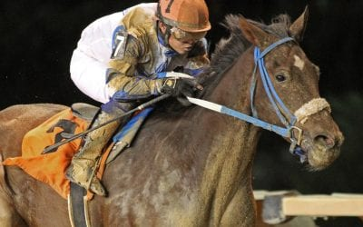 Charitable Annuity looks to take show on the road in Swatara