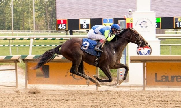 No Dozing solid favorite in Saturday's Concern at Laurel Park