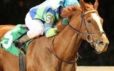 Red Hot Diva wins My Sister Pearl for third time