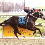 Laurel stakes to be qualifiers for Santa Anita G1 events