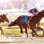 Tequilita favored in stacked edition of G3 Charles Town Oaks