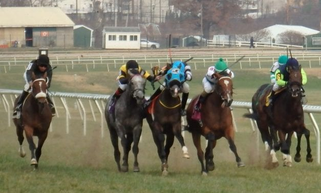 Change in Laurel allowance good news for $20k claimers