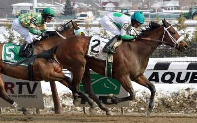 Shayjolie returns in Parx allowance