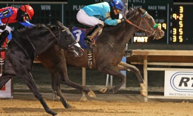 Honeymoon Cruise rallies to Casey Memorial victory