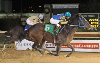 With Cherokee Blessing, patience — and having best horse — pay off