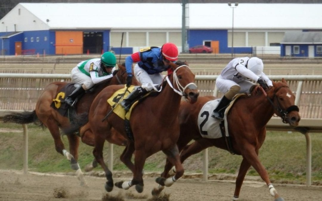 Maryland Commission shelves Lasix-free baby races