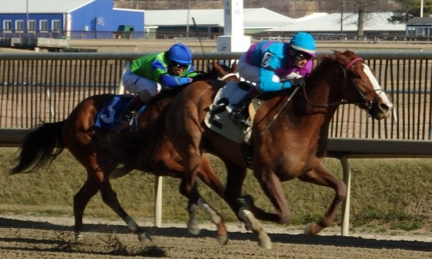 Tickled Pink wows in debut
