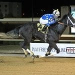 Moonlit Song triumphs in Fancy Buckles