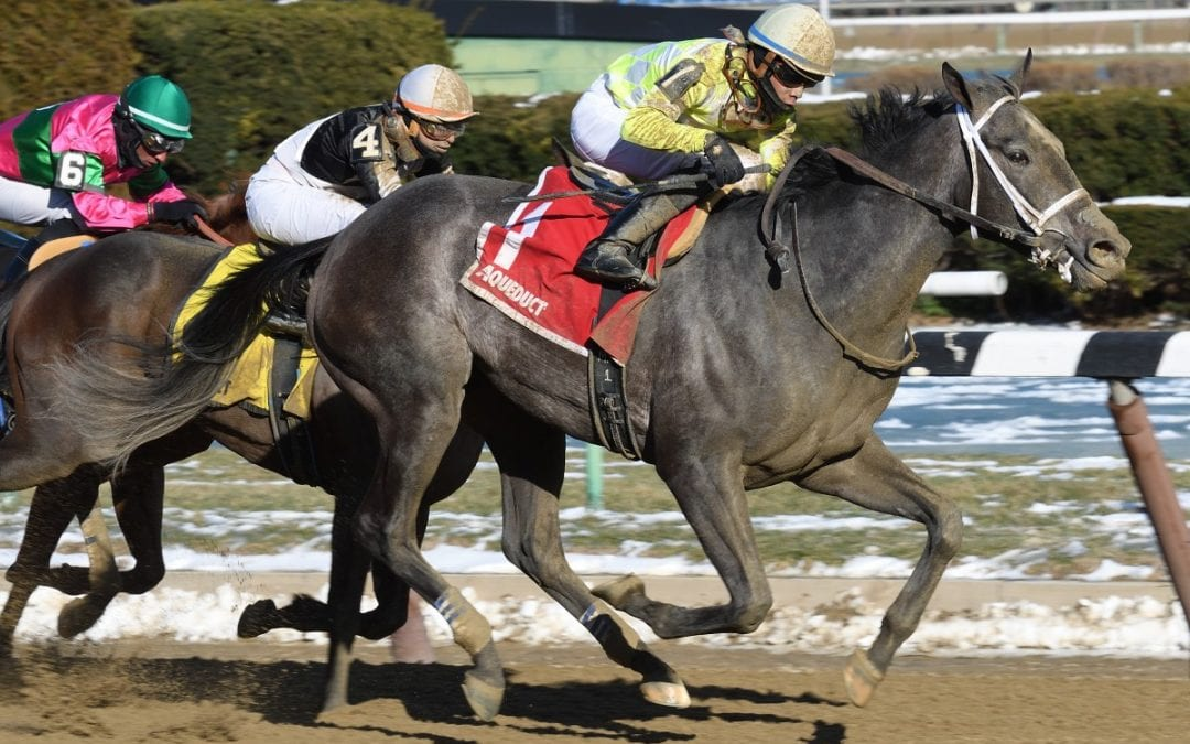 NJ-bred Sunny Ridge surges to Stymie win