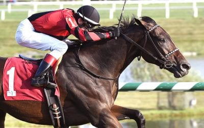 Va-bred Rapid Rhythm takes Fair Grounds stake