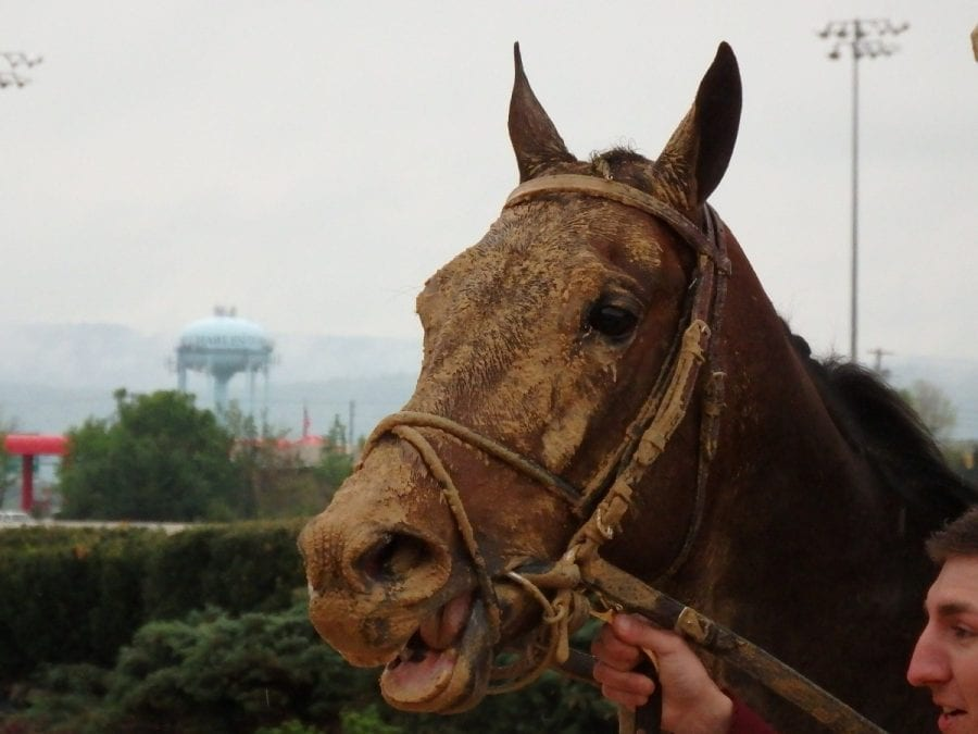 Opinion: Approve the Charles Town stakes schedule