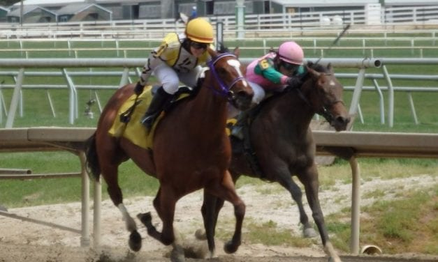 """""""Pleasant surprise"""" as Contrarity becomes first Maryland 2yo winner of 2017"""
