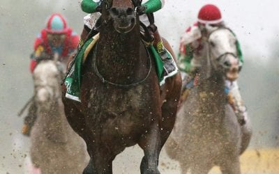 Carr's Exaggerator photo wins Frutkoff Award