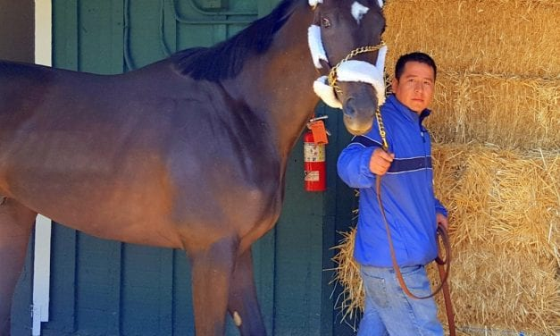 Derby champ Always Dreaming first to arrive at Pimlico