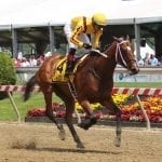 Asmussen earns $50,000 Pimlico trainer bonus