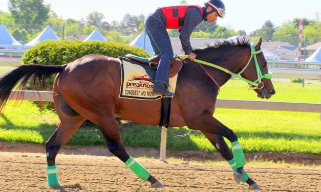 Preakness profiles: Conquest Mo Money