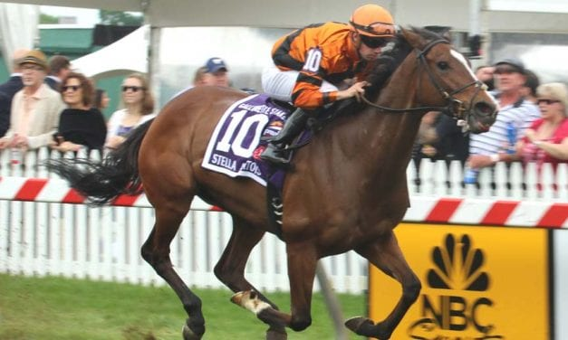 Cambodia earns first stakes score in Gallorette