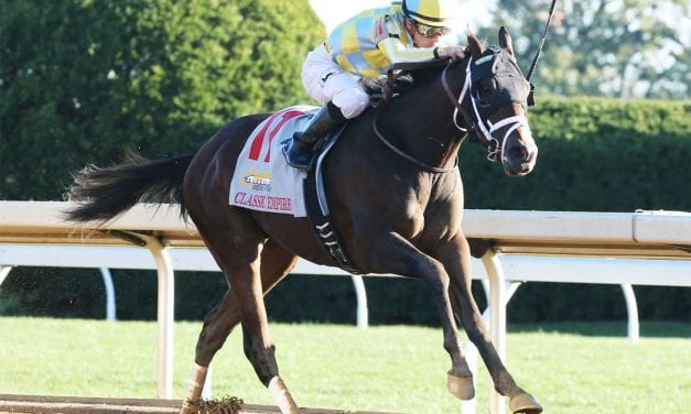 Classic Empire gearing up to take best shot in Preakness