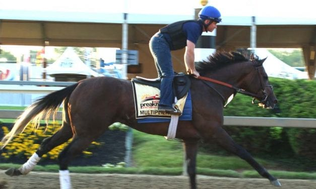 Crowdsourced Preakness: Contest players pick the winner