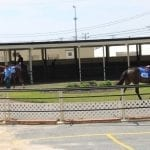 Expectations high on eve of Fasig-Tipton 2-year-old sale