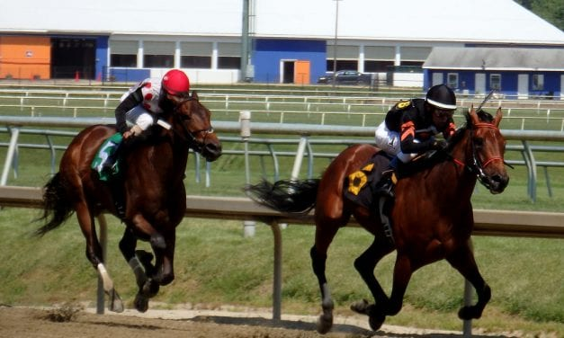 Midlantic regulators group takes steps to foster equine safety