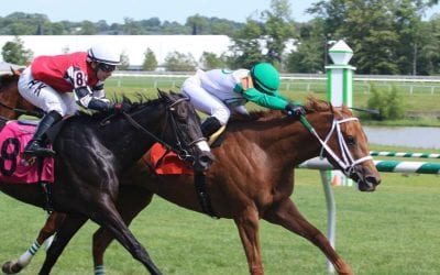"""""""Coming into her own,"""" Just Talkin looks for win in Penn Ladies Dash"""