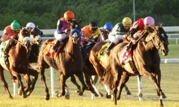Pennsylvania equine industry on alert as state budget deadline looms