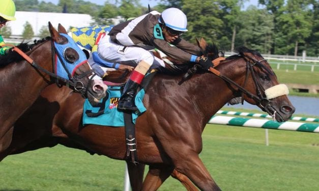 In Focus: Wagering De Francis Dash Day stakes