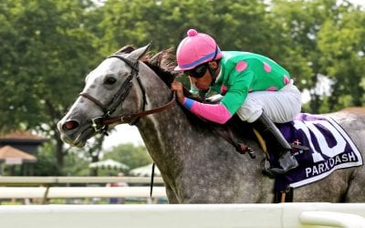 MATCH: Dynatail, Pure Sensation top turf stakes