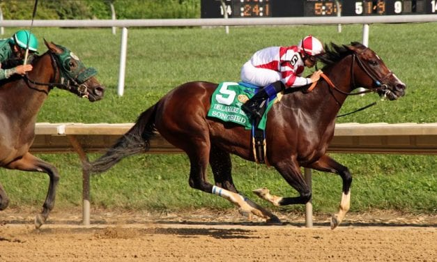 Delaware Park to race 81 days in 2018