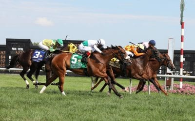 Motion nets eighth Dick Memorial win as Guilty Twelve up in time