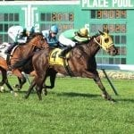Tricky Escape storms to G3 Violet win