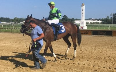 """""""They do all the work"""": Maryland Pride jocks credit trainers"""