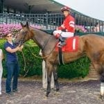 Jock-turned-trainer Erin Wilkinson hoping to learn as she goes – and grows
