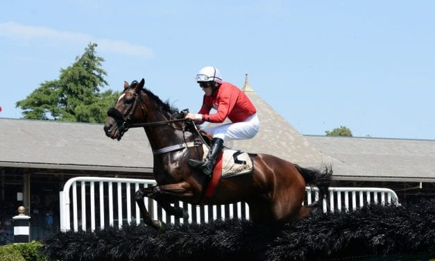 Md-bred Swoop takes Spa's Mrs. Phipps Stakes over jumps