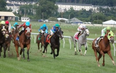 Turf sprinters highlighted in Saturday's MATCH races