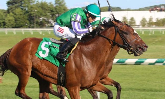 Hodsdon gets first stakes win as Sweet Sandy upsets Backer Stakes