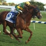 Maryland-bred award finalists announced