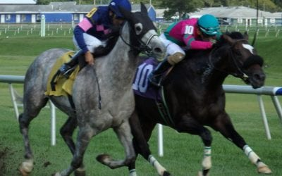 Off to the Races radio returns August 8
