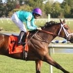 """In Virginia-bred races, connections """"excited to watch it all"""""""