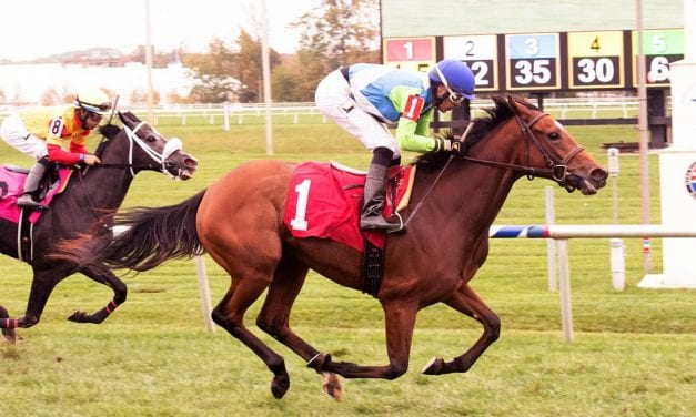 Madame Milan, kin to Barbaro, breaks her maiden