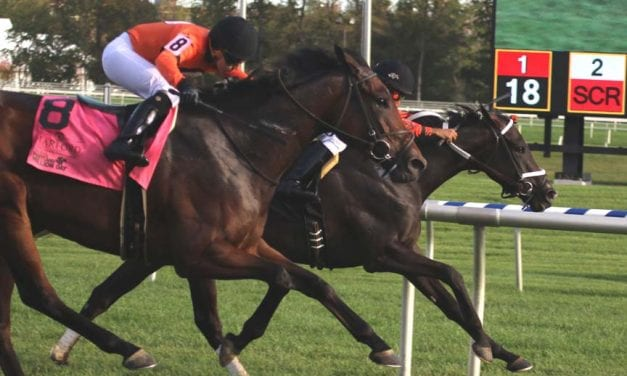 My Sistersledge, hitting her stride, takes Md. Million Ladies