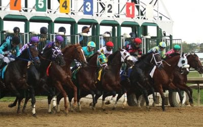 Laurel Park: Fall meet facts and figures